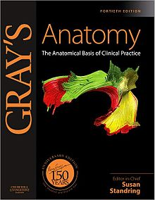Gray's Anatomy: The Anatomical Basis of Clinical Practice, 40th edition