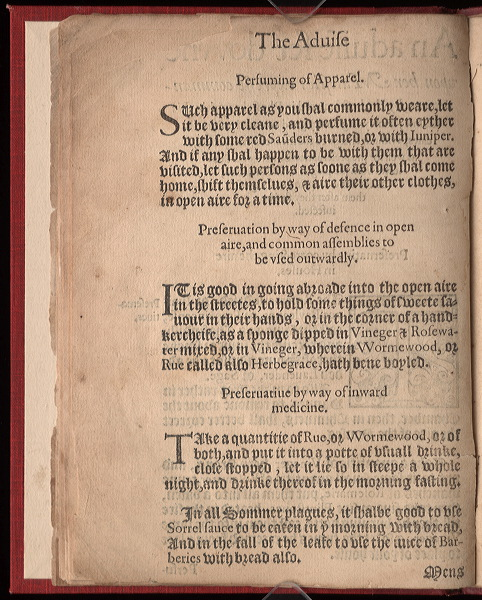 "In the 1578 ""Plague Book"", Queen Elizabeth's advisers discuss the importance of clean apparel in controlling the spread of the plague."